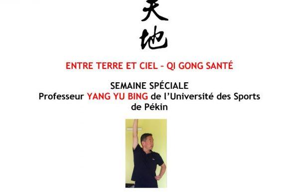 Stages de Qi Gong avec le professeur Yang Yu Bing